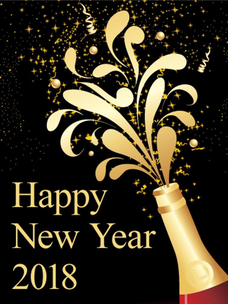 happy new year 2018 from a nhs survivor stella vig
